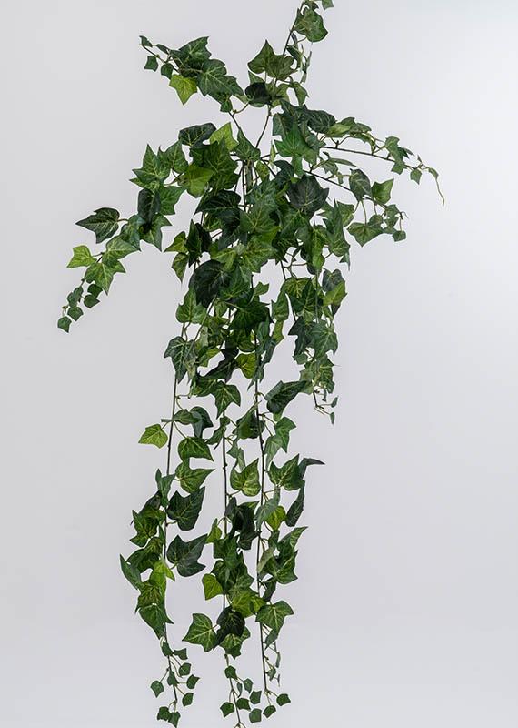 Προυντζόπουλος Τεχνητά Φυτά - Μικροί Κισσσοί