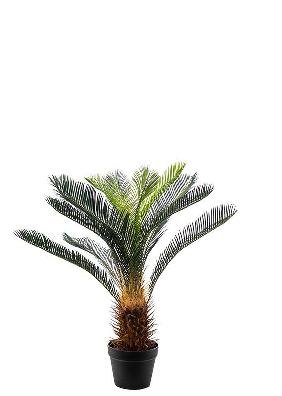 Προυντζόπουλος Τεχνητά Φυτά - Τσίκας
