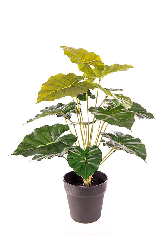 Προυντζόπουλος Τεχνητά Φυτά - Γλαστράκια Real Touch